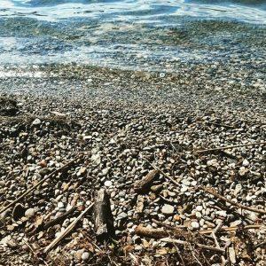 Strandgut © Susanne Wosnitzka